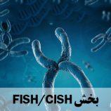 FISH /CISH